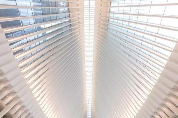"""花了40亿美金,历时12年,就建造了这个""""钢铁大鸟""""车站(3)"""